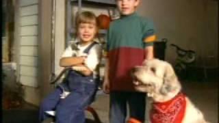 90s-LiftMaster-Garage-Door-Kids-Commercial